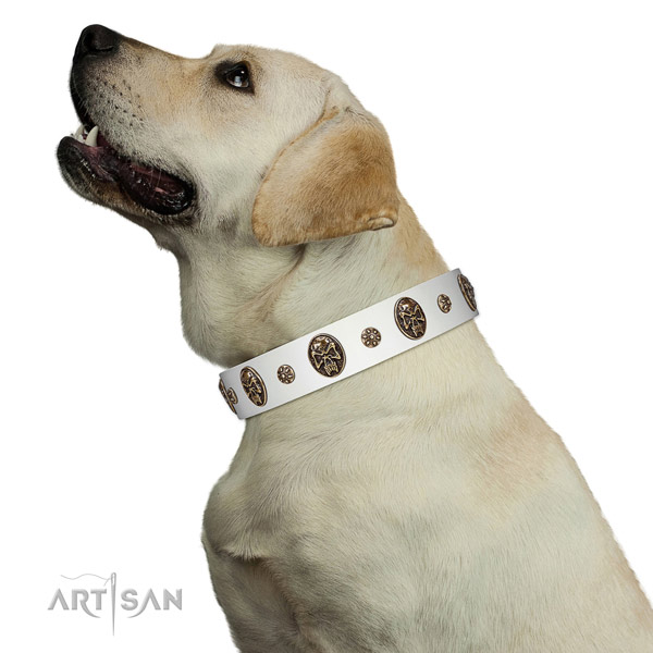 Handy use dog collar of genuine leather with designer decorations