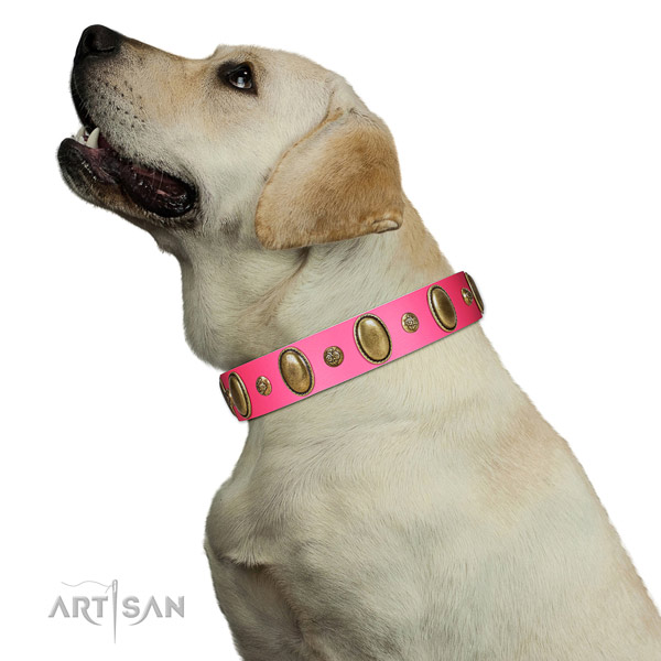 Easy wearing soft full grain natural leather dog collar with adornments