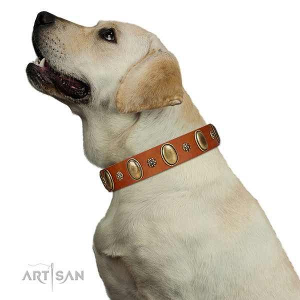 Handy use top notch genuine leather dog collar with studs