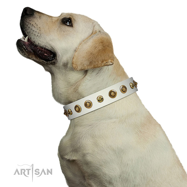 Top notch full grain genuine leather dog collar with decorations for your doggie