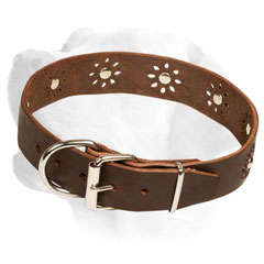 Firm Leather Labrador Collar Equipped with studs of flowers