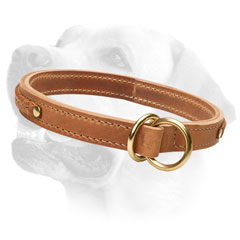 Silent Leather Collar With Brass Fittings
