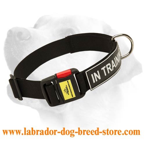 All Weather Nylon Collar For Labrador