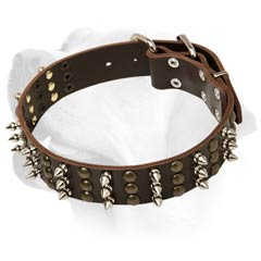 Labrador Decorative Durable Dog Leather Collar