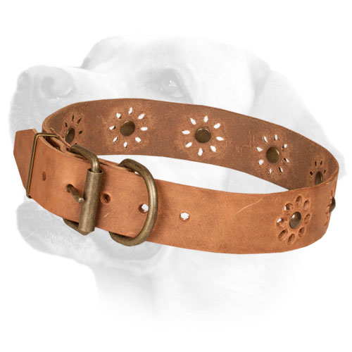 Durable Leather Dog Collar with Brass Hardware