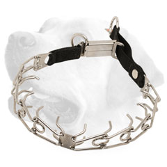 Strong Labrador collar with Symmetrically Arranged Prongs
