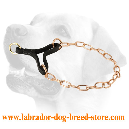 how to make a leather martingale collar