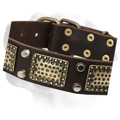 Durable leather decorated collar for Labrador