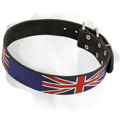 High quality leather Labrador collar with exclusive design
