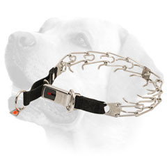 Labrador Collar     with Click Lock Buckle