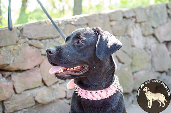 Fancy Pink Spiked Leather Labrador Collar for Female Dogs