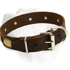 Leather Dog Collar For Labrador Equipped With Nickel Hardware