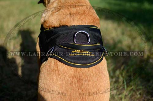 D-Ring On Nylon Labrador Harness for Training