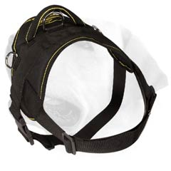 Labrador Nylon Harness With Strong Buckle