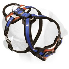 Attack/Agitation Decorative Leather Harness For Labrador