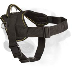 Labrador Dog Lightweight Nylon Harness