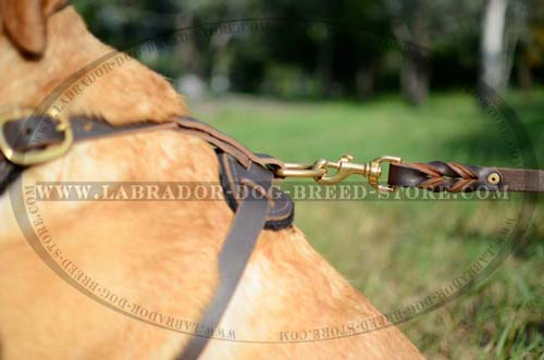Labrador Handmade Leather Dog Harness