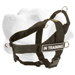 Labrador Harness Nylon Training With Extra D-Rigns