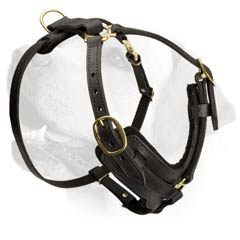Labrador Leather Harness With Improved Comfort