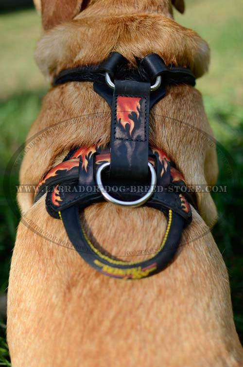 Labrador Designer Leather Dog Harness With Handle