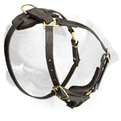 Durable Leather Harness For Labrador