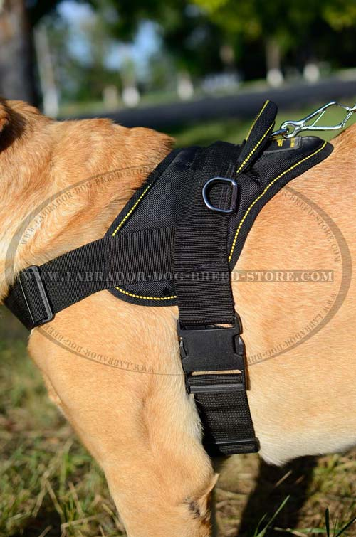 Labrador Nylon Dog Harness