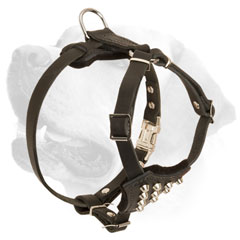 Adjustable Walking Labrador Puppy Harness Buckle