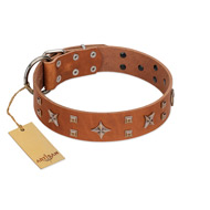 """Dreamy Gleam"" FDT Artisan Tan Leather Labrador Collar Adorned with Stars and Squares"