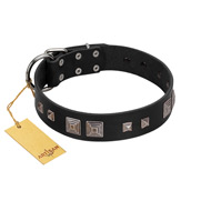 """Foregone Riches"" FDT Artisan Black Leather Labrador Collar with Old Silver-like Square Studs and Pyramids"