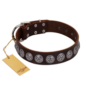 """Charming Circles"" FDT Artisan Brown Leather Labrador Collar with Silver-like Studs"