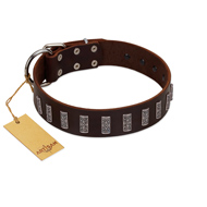 """Brown Lace"" Handmade FDT Artisan Brown Leather Labrador Collar for Everyday Walks"