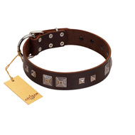 """Object of Virtu"" FDT Artisan Brown Leather Labrador Collar with Old Silver-like Square Studs and Pyramids"