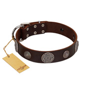 """Flashy Woof"" FDT Artisan Brown Leather Labrador Collar with Chrome Plated Brooches"