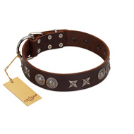 """Antique Style"" Designer Handmade FDT Artisan Brown Leather Labrador Collar"