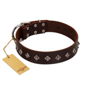 """Boundless Energy"" Premium Quality FDT Artisan Brown Designer Leather Labrador Collar with Small Pyramids"