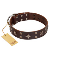 """Stars in Sands"" Modern FDT Artisan Brown Leather Labrador Collar with Studs and Stars"