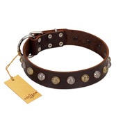 """Gape Buster"" FDT Artisan Brown Leather Labrador Collar with One Row of Studs"