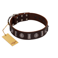 """Spiky Way"" FDT Artisan Brown Leather Labrador Collar with Silver-Like Decorations"