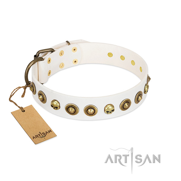Natural leather collar with amazing adornments for your dog