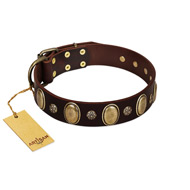 """Bronze Idol"" FDT Artisan Brown Leather Labrador Collar with Eye-catching Ovals and Small Studs"