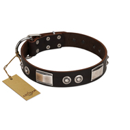 """Baller Status"" FDT Artisan Brown Leather Labrador Collar Adorned with a Set of Chrome Plated Studs and Plates"