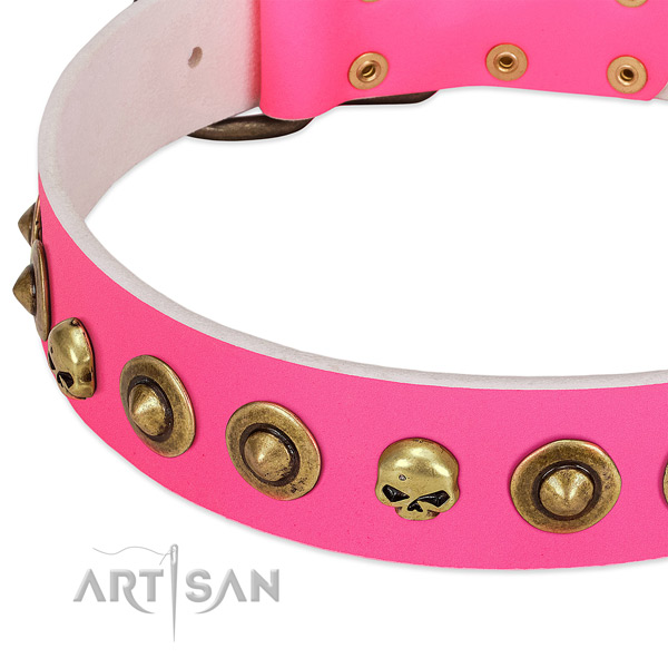 Extraordinary embellishments on leather collar for your doggie