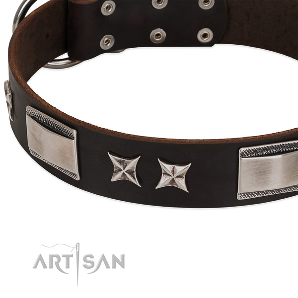 Easy wearing collar of natural leather for your handsome pet