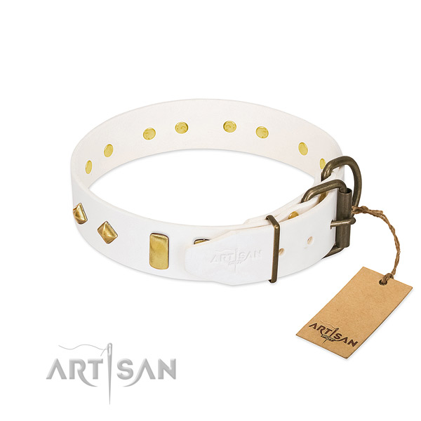 High quality full grain natural leather dog collar with corrosion proof fittings