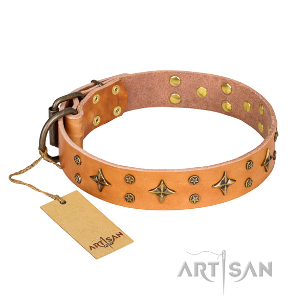 Daily use dog collar of high quality full grain leather with decorations