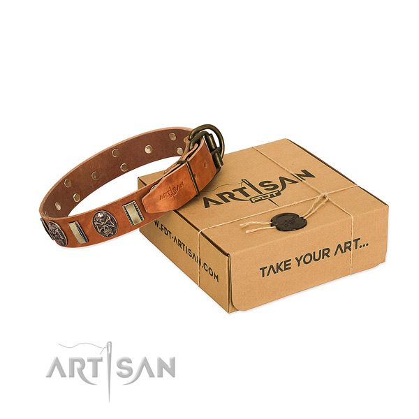 Corrosion proof D-ring on full grain genuine leather dog collar for everyday use