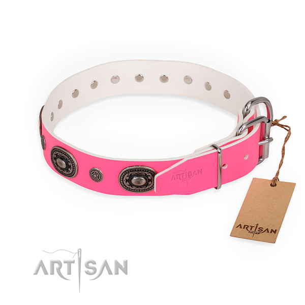 Stylish walking easy wearing dog collar with rust-proof D-ring