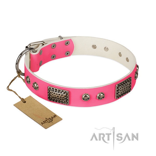 Easy wearing genuine leather dog collar for daily walking your dog