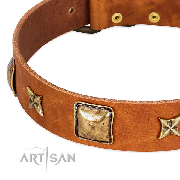 Rust-proof D-ring on natural genuine leather dog collar for your pet