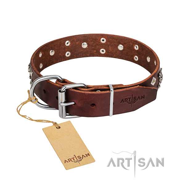 Handy use dog collar of best quality full grain leather with studs